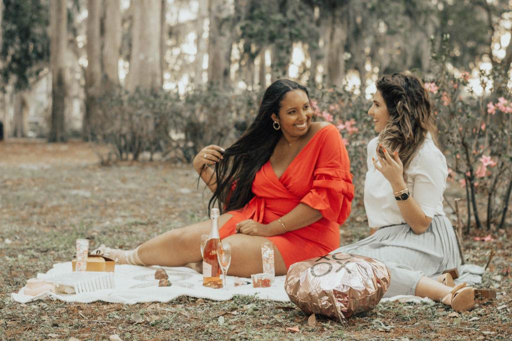Galentine's Day picnic
