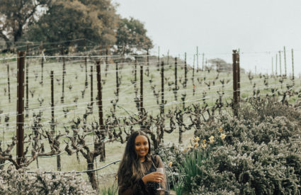Touring Wine Country (Napa and Sonoma) with Green Dream Tours