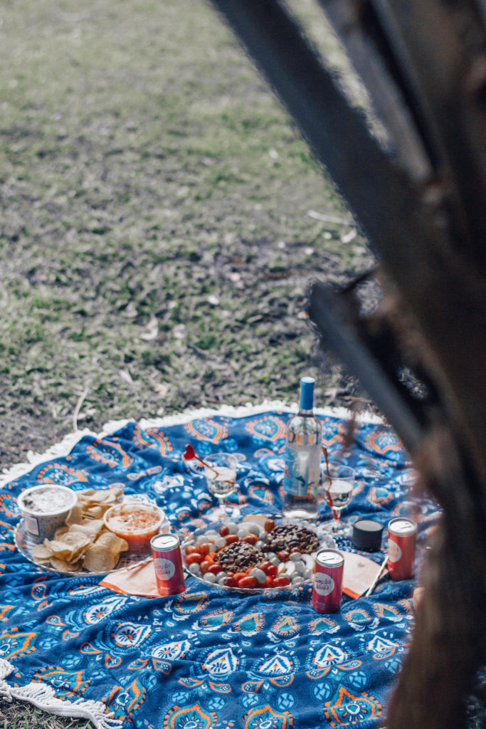 Bougie on a Budget: Having a Picturesque Girls Picnic